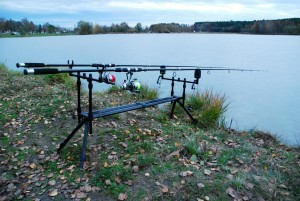 canne carpfishing