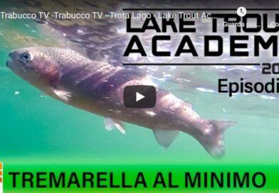 Tremarella al minimo by Daniele Bonetti